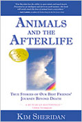 Animals & the Afterlife