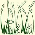 Wildlife Watch logo